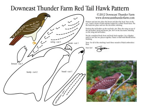 The Ominous Red Tailed Hawk Patterns Templates Tutorials 1