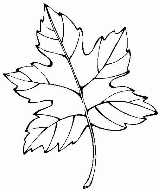 Раскраска: осень золотая для детей | Рисунки для ...