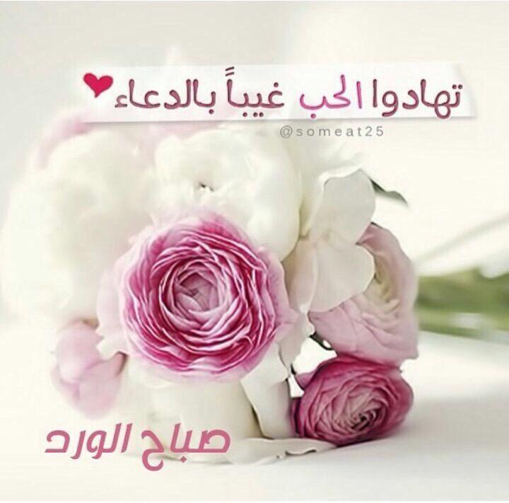 اللهم اسعد قلبي وقلب من سكن قلبي Morning Wish Rose Flowers