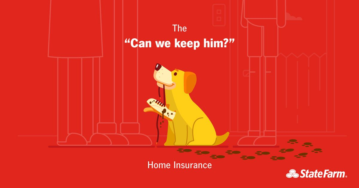 State Farm Facebook Campaign On Behance State Farm Campaign New York Illustration