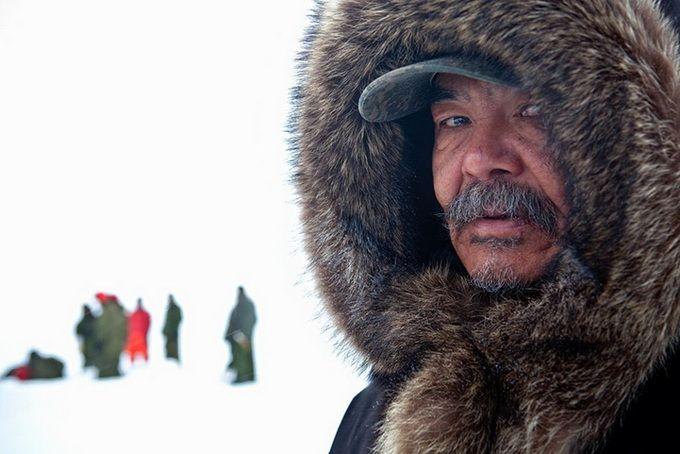 Arctic landscapes by Dave Brosha