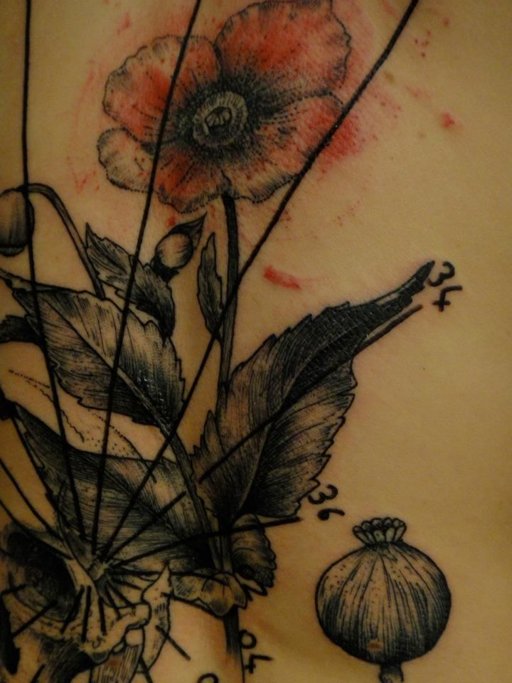 flower and plant detail tattoo by xoil xoil pinterest. Black Bedroom Furniture Sets. Home Design Ideas