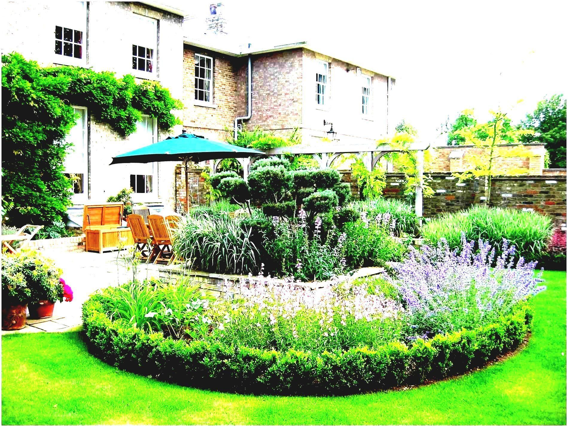 Astonishing Cheap No Grass Backyard Ideas | Low ... on Cheap Backyard Ideas No Grass  id=91417