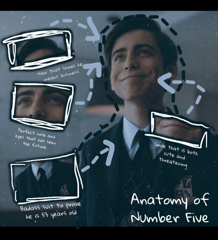 Anatomy Of Number Five Anatomy Academy Umbrella