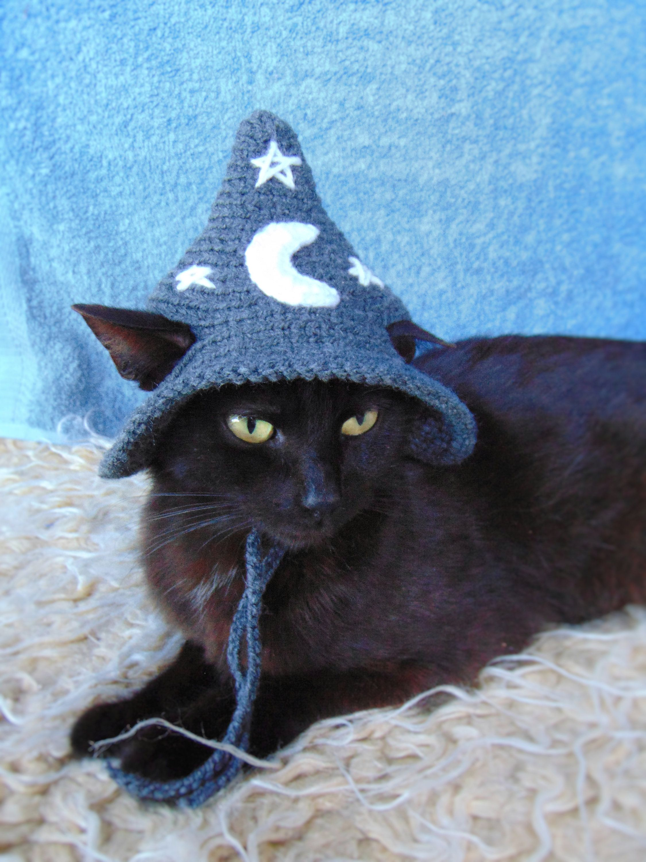 Dark Grey Wizard hat for cat, Halloween wizard pet costume, Dark Grey Hats for cats, Cat accessories, Gift for cat lover