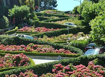 http://www.travel-magazine-uk.com/images-01/Lombard-Street-in-San-Francisco-450.jpg