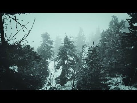 ❄️ Snowstorm Blizzard Wind Sounds For Sleeping, Relaxing