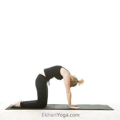 yoga poses avec images  discours