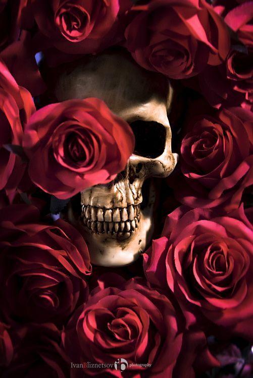 красивые картинки с черепом и цветы женщины