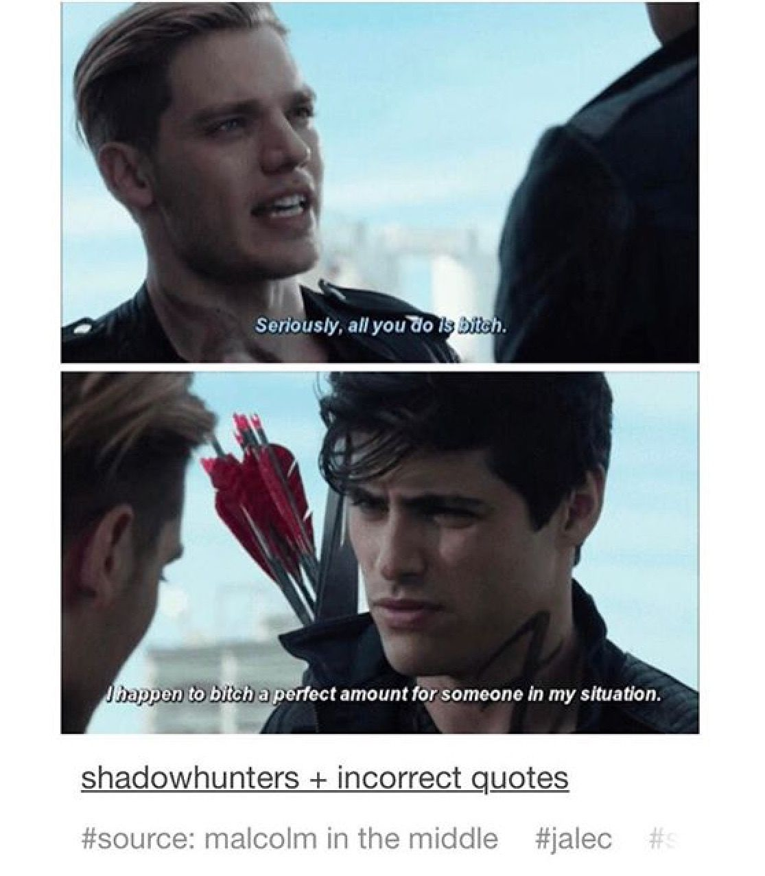 incorrect shadowhunters quotes - 736×842