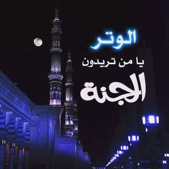 صلاة الوتر Words Quotes Islam Words