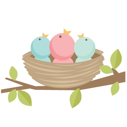baby bird on branch clip art by downloading our digital files you rh pinterest com baby blue bird clipart baby bird clipart free