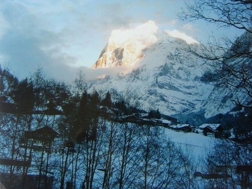Grindelwald/Switzerland