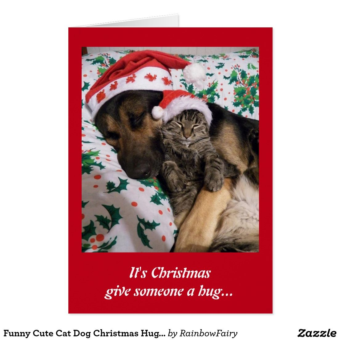 Funny Cute Cat Dog Christmas Hugs Greeting Card Funny Cute