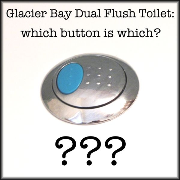 Glacier Bay Dual Flush Toilet Blue Button What S It For Which Button Is Which Dual Flush Toilet Glacier Bay Flush