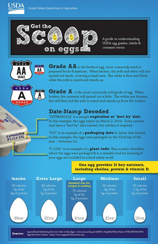 Get the Scoop on Eggs: a guide to USDA egg grades, labels and common terms.