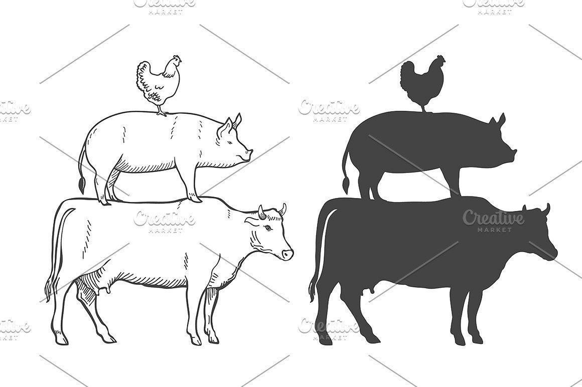 Chicken Pork Cow Farm Animals Vector Farm animals