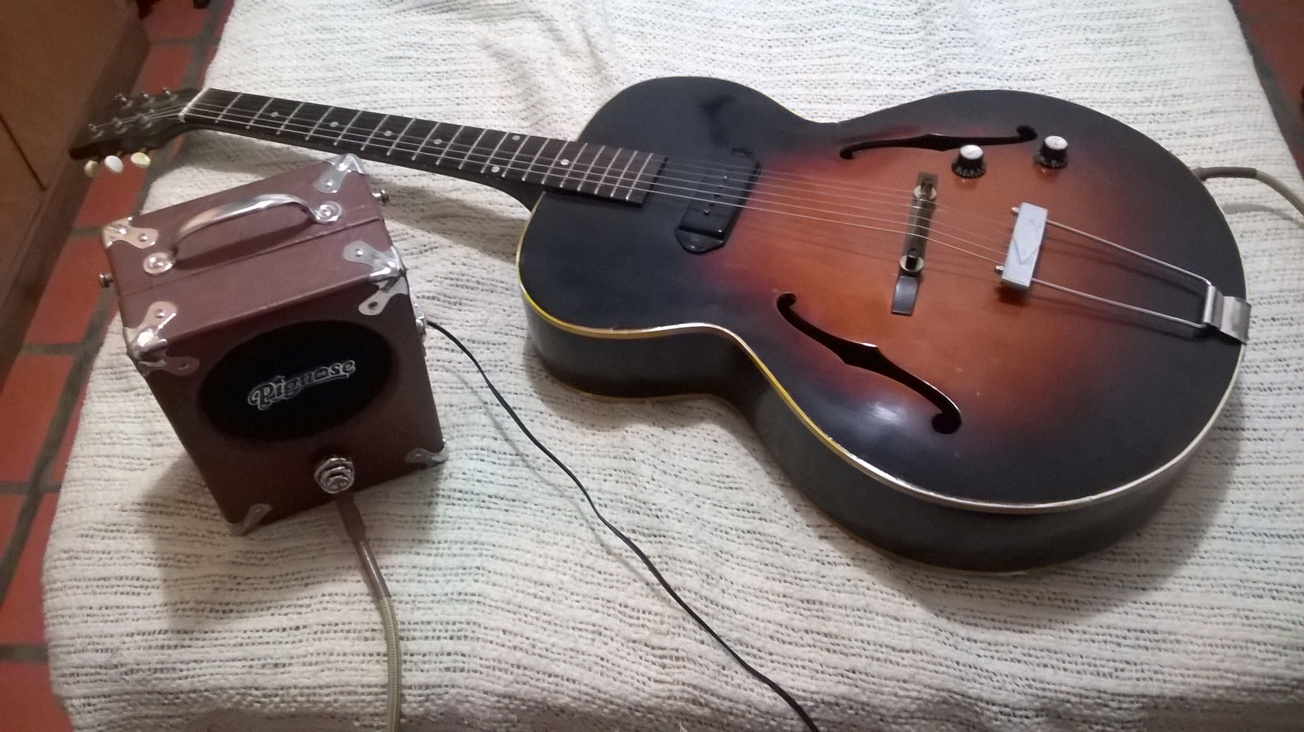My Gibson Es 125 And The Pignose