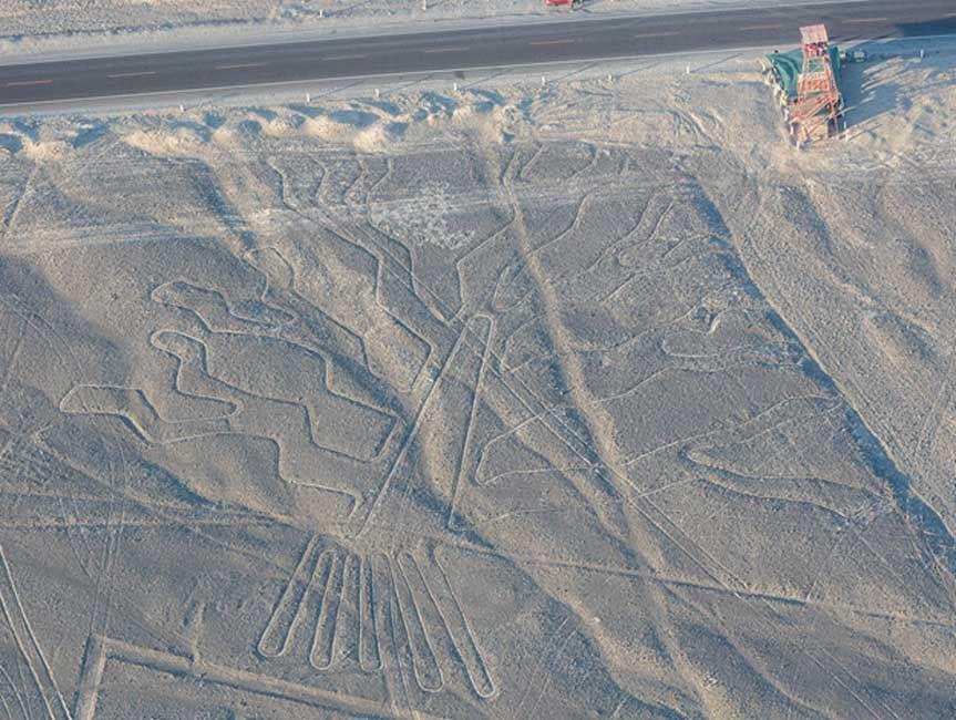El Arbol De Las Lineas De Nazca Peru Lineas De Nazca Nazca Peru Arte Precolombino