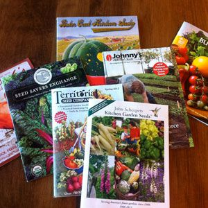 garden seed catalogs. Seeds, Seed Catalogs, And Starting Garden Catalogs W