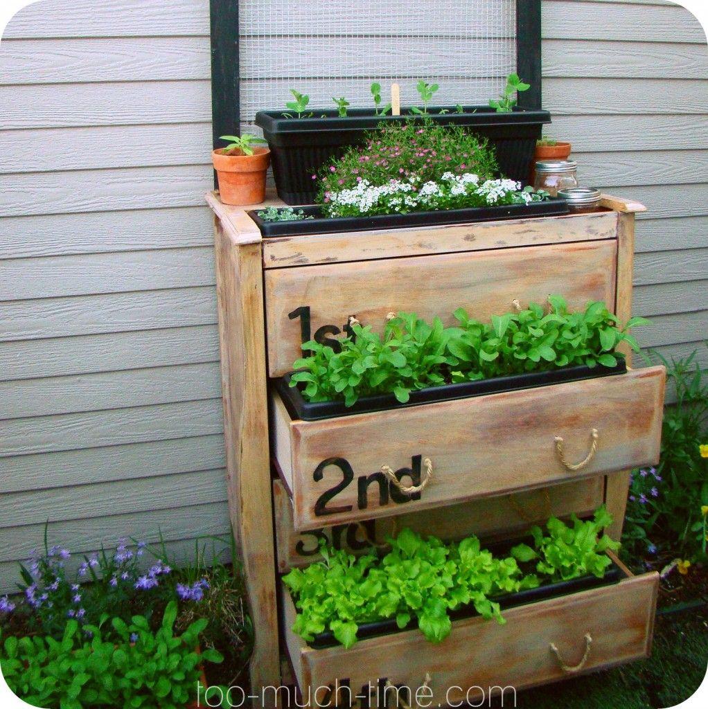 24 Indoor Herb Garden Ideas To Look For Inspiration: Outdoor Dresser Planter Box