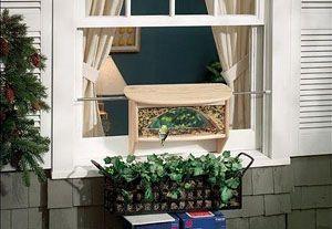 Window Bird Feeder Over A Planter Box To Minimize Mess On An Apartment Balcony
