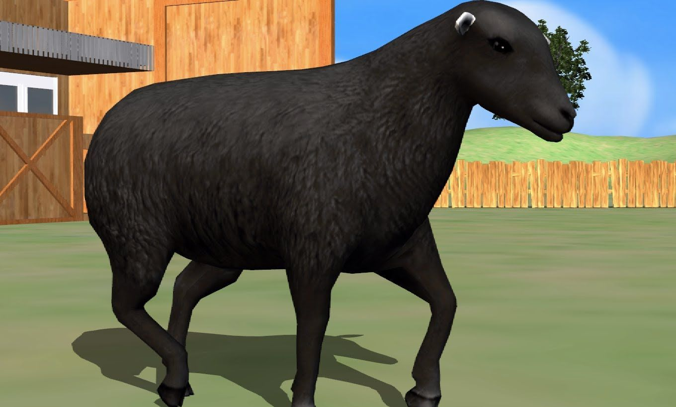 This Is Our Version Of The Song Baabaablacksheep For