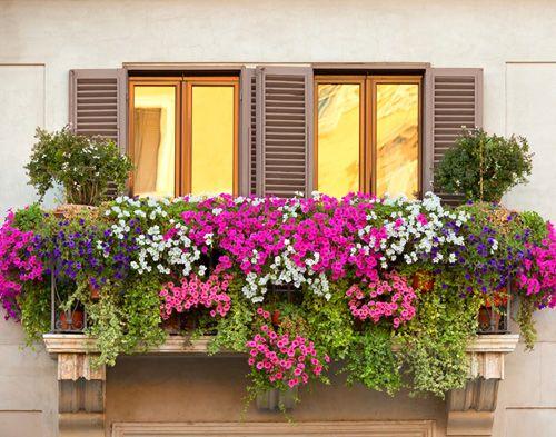 Espectaculares balcones con jard n que tienes que ver for Decoracion de jardines pequenos con flores