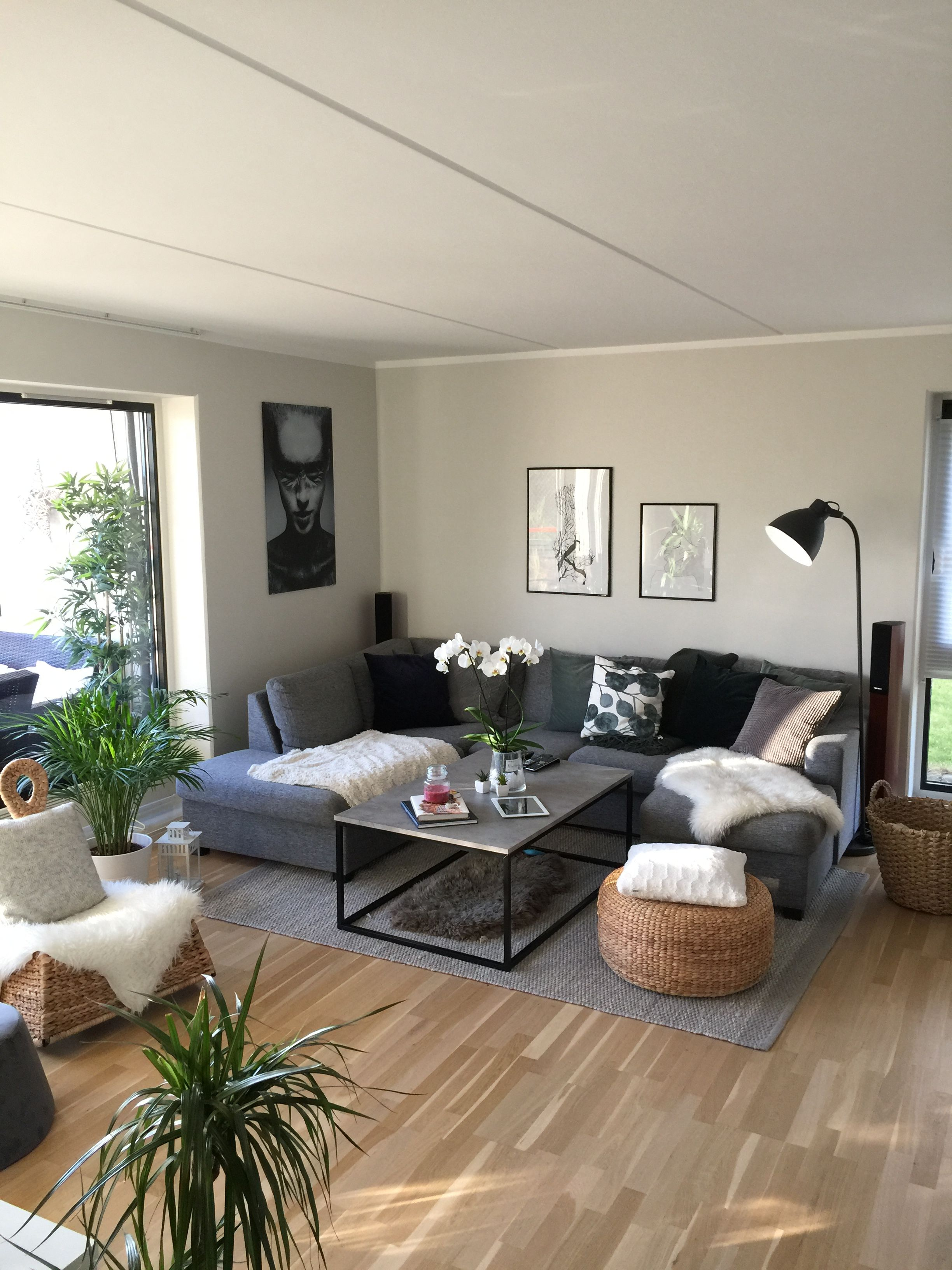 imageandrea patterson on interiors  large living room