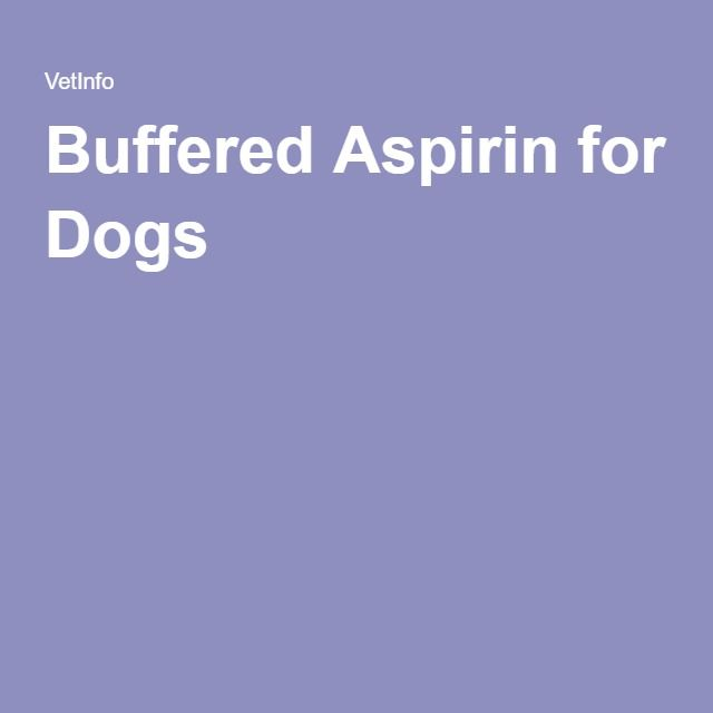 Can Dogs Eat Baby Aspirin