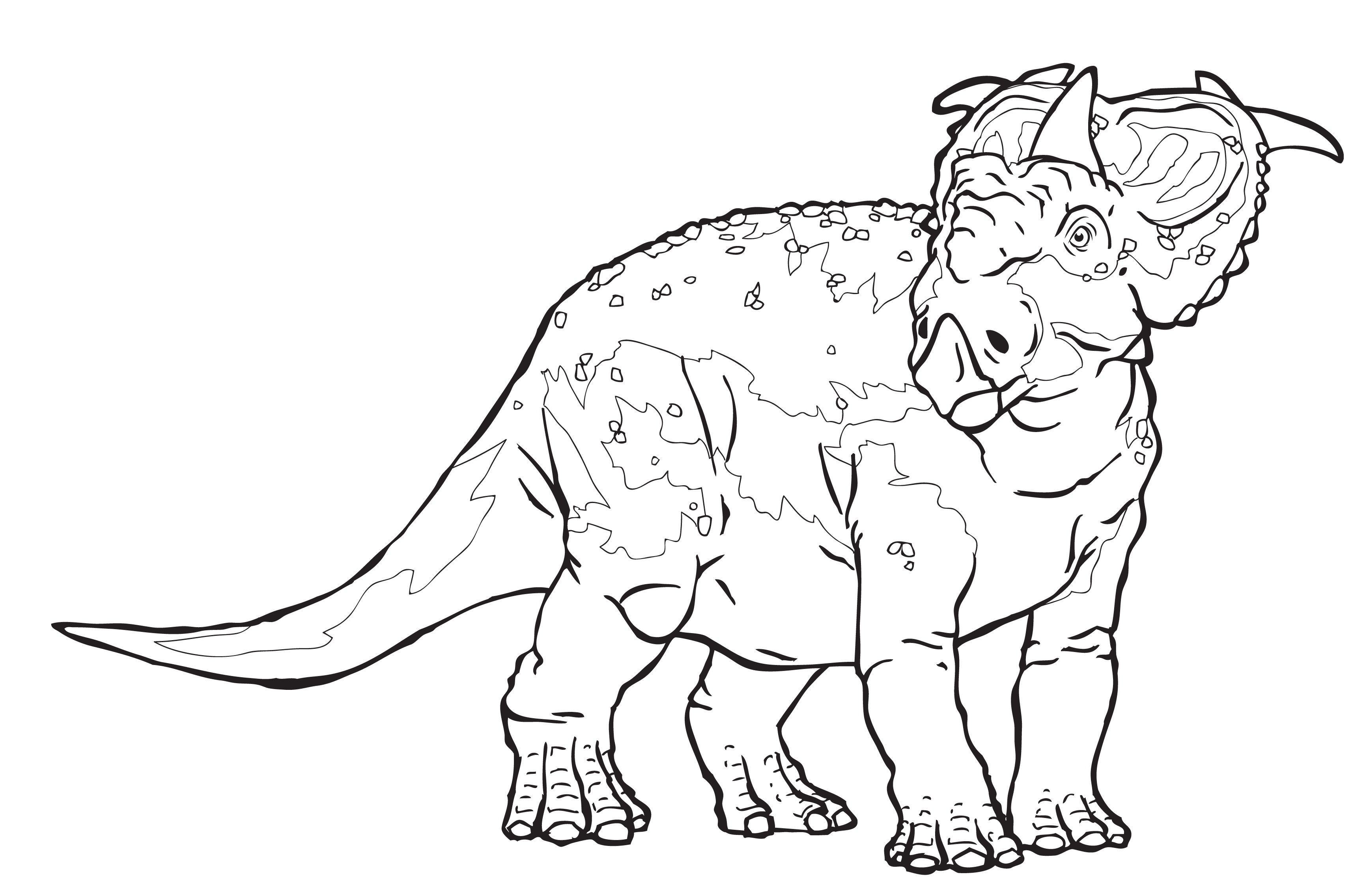 Pachyrhinosaurus Dinosaurs Coloring Pages For Kids B6y