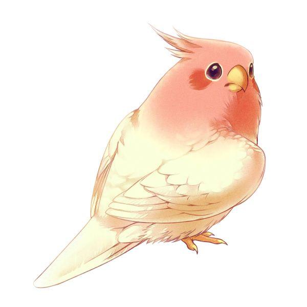 Pink By Era Artwork On Deviantart Animal Art Cute Birds Cute