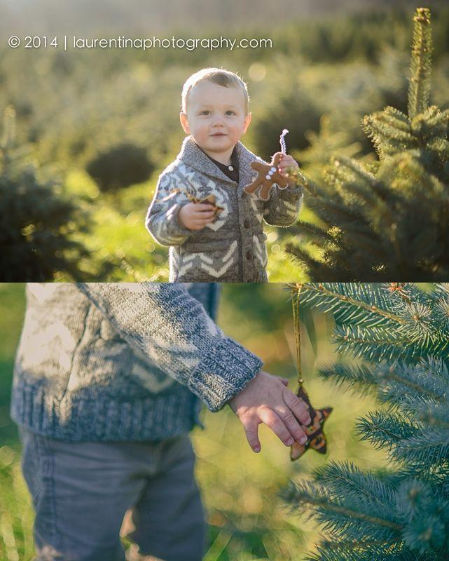 Christmas Tree Mini Session Snicker S Gap Tree Farm Bluemont Va Christmas Family Photos Tree Farms Mini Session