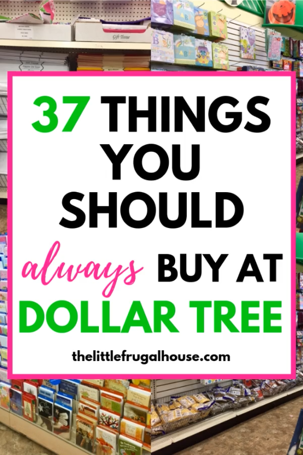 37 Things You Should Always Buy at Dollar Tree - The Little Frugal House