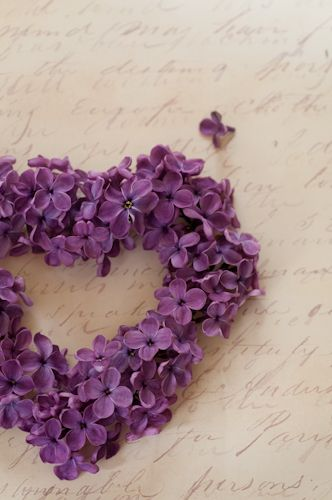 Heart Of Purple For Flower Girl To Hold Would Be Really Cute Different Purple Flowers Lilac Blossom Photo Heart