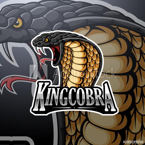 King Cobra Mascot Logo Design Buy This Stock Vector And Explore Similar Vectors At Adobe Stock Adobe Stock King Cobra Logo Design Snake Logo