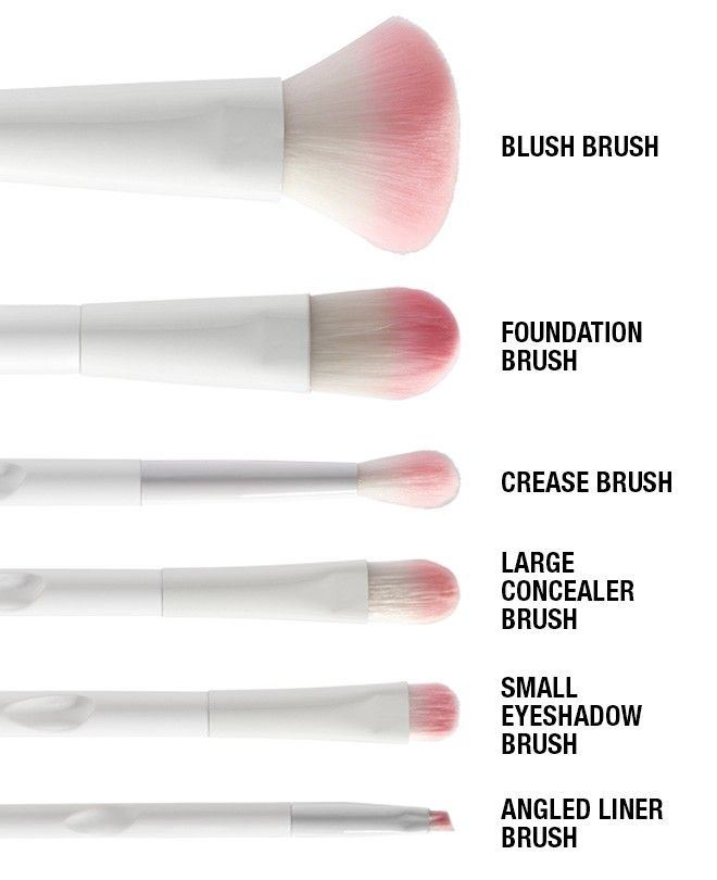 wet n wild brushes names. wet n wild\u0027s cruelty-free brush set is perfect for applying your favorite cosmetics with style. includes six of our high-quality brushes the eyes, wild names