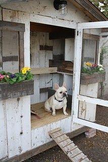 A chicken coop???