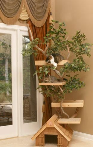 Home Decor, Comfortable And Cozy Cool Cat Tower That Look So Unique And Amazing For Your Pet With The Elegant Design Ideas With House Shape And Tree With White Window And Brown Curtain ~ Make Your Pet Feel More Comfortable With Creating Cool Cat Towers
