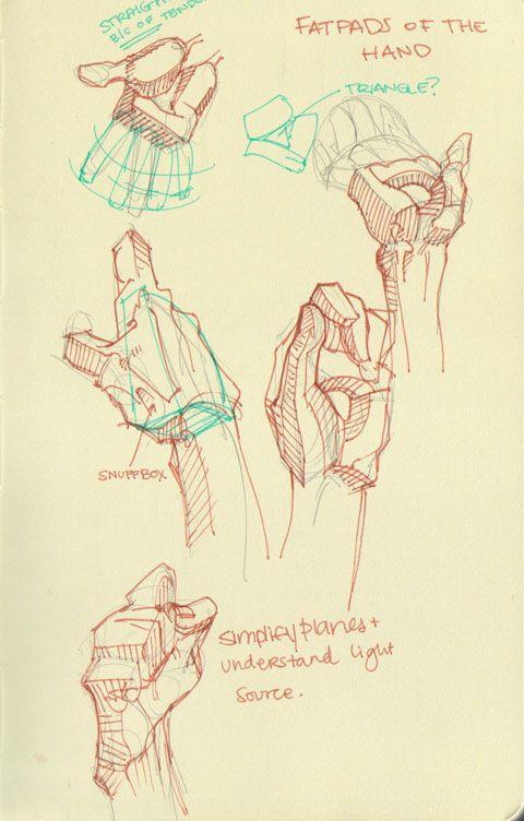 Mari Arakaki explique comment dessiner l\'anatomie humaine | anatomia ...