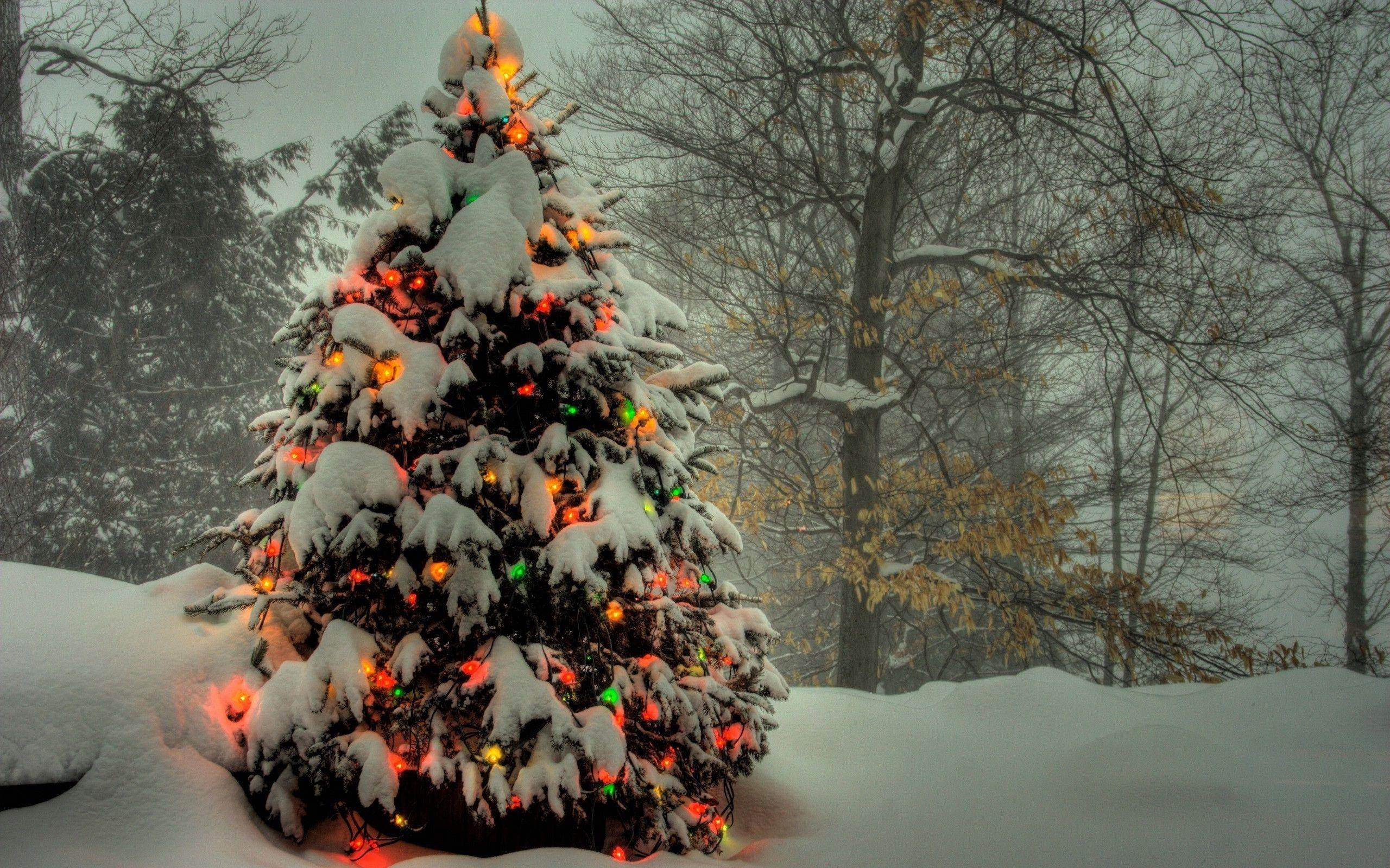 2560x1600px christmas wallpaper pack 1080p hdcherish london
