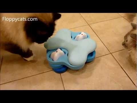 Nina Ottosson Dog Tornado Cat Puzzle