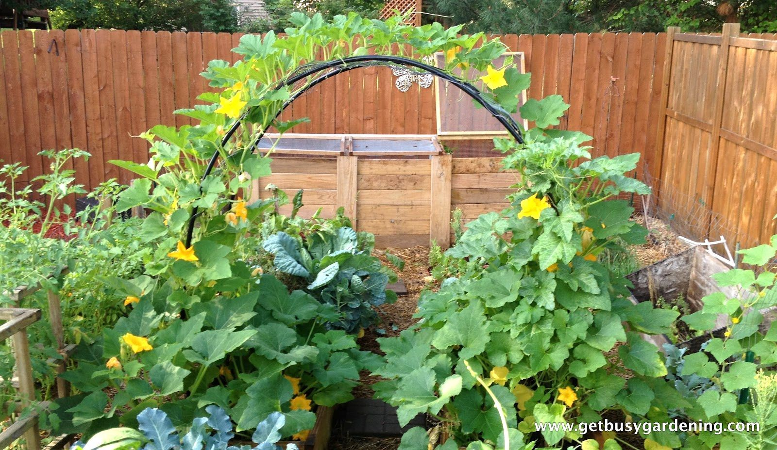 Small vegetable garden layout ideas amazing creative and inspirational vegetable garden plans idea in