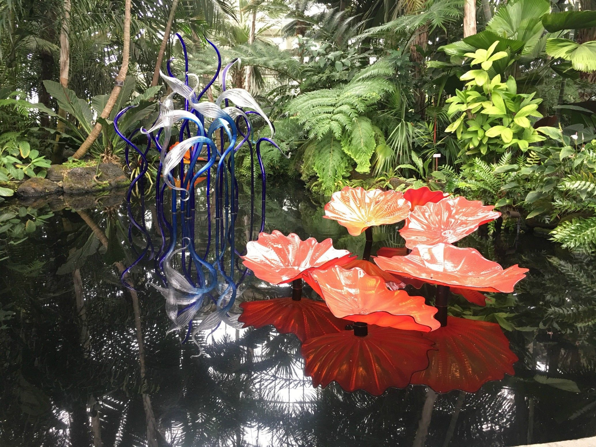 28d0ceaaaa824b37345eb47f7897b1e6 - Chihuly Exhibit At Ny Botanical Gardens
