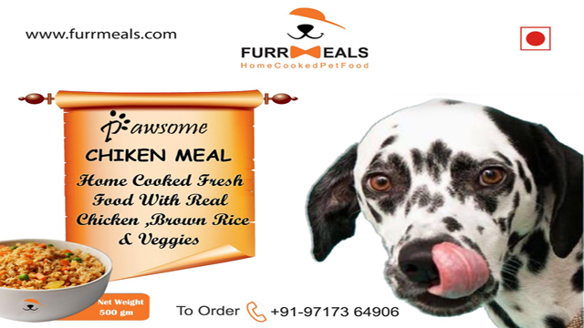 Fresh Food Supplier For Dogs In Delhi Healthy Dog Food Recipes Food Suppliers Food Animals
