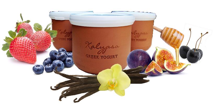 Kalypso Greek Yogurt - love these yogurts and the bonus art project opportunity that the pots create!