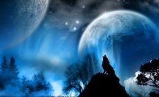 Howling Wolf Wallpapers Background For Desktop Wallpaper 1366 X 768 Px 31523 KB White Iphone Moon Savage Black