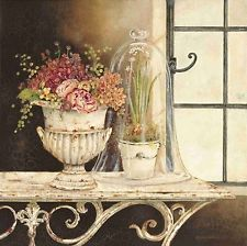 Kathryn White: Paperwhite Cloche Fertig-Bild 40x40 Wandbild Landhaus Shabby