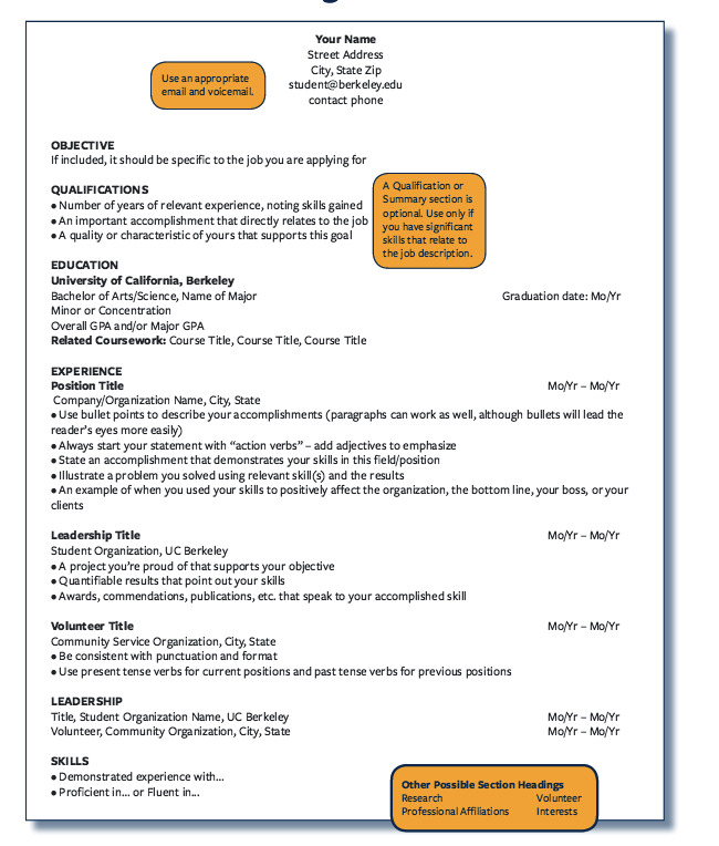 Resume Outline Examples Sample Resume Outline Chronological Format  Httpresumesdesign