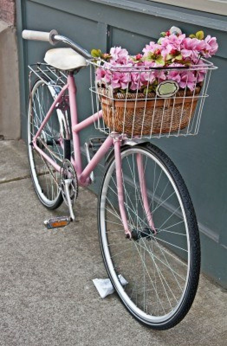 This Vintage Pink Girls Bicycle Has Beautiful Pink Flowers In A